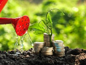 How Eco-friendly Is The Investment? Ethical Investments Described